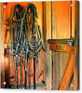 Horse Tack Acrylic Print