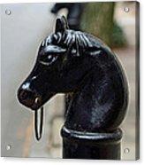 Horses On Delancey Street Acrylic Print by Lisa Phillips