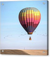 Hot Air Balloon And Birds Acrylic Print by Photo by Greg Thow