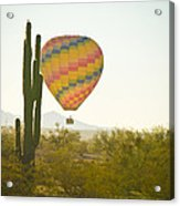 Hot Air Balloon Over The Arizona Desert With Giant Saguaro Cactu Acrylic Print