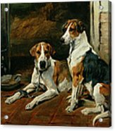 Hounds In A Stable Interior Acrylic Print