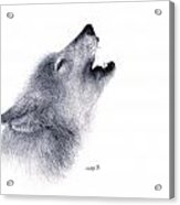 Howl Acrylic Print