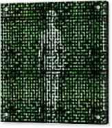 Human Body, Abstract Artwork Acrylic Print