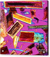 Human Hair Stubble Acrylic Print by M. I. Walker
