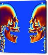 Human Skulls Acrylic Print