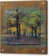 Humboldt Park Trees Layered Acrylic Print