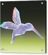Hummingbird - Use Red-cyan 3d Glasses Acrylic Print