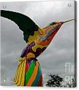 Hummingbird Art IIi Acrylic Print