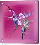 Hummingbird Fantasy Abstract Acrylic Print