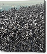 Hundreds Of Robots Running Wild Acrylic Print