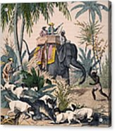 Hunting: Big Game, 1852 Acrylic Print