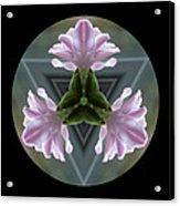 Hyacinth Kaleidoscope Acrylic Print