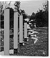 Hyacinth Pillars Acrylic Print