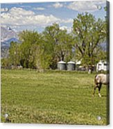 Hygiene Colorado Boulder County Scenic View Acrylic Print