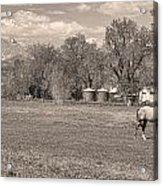 Hygiene Colorado Boulder County Scenic View Sepia Acrylic Print