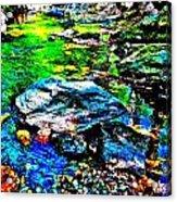Hyper Childs Brook Z 60 Acrylic Print