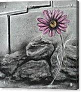 I Dance Alone Acrylic Print by Carla Carson