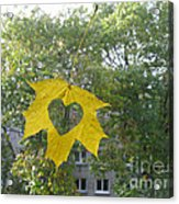 I Love Autumn 02 Acrylic Print