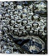 I See Bubbles Acrylic Print