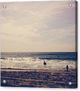 I Want To Swim In The Ocean With You Acrylic Print by Laurie Search