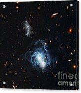 I Zwicky 18 Galaxy Acrylic Print