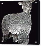 Ice Cold Lamb Carved In Ice Acrylic Print