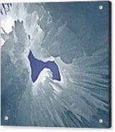 Ice Eagle Acrylic Print