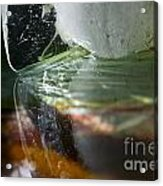 Ice Obsession Two Acrylic Print