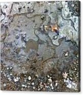 Ice On The Rocks Acrylic Print