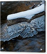 Ice Scallops Acrylic Print