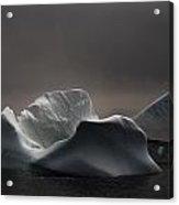 Icebergs In Fog, Quirpon Island Acrylic Print