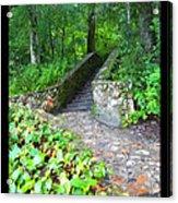 Ichetucknee Stairway Acrylic Print