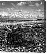 Icy Alaskan Beach Acrylic Print