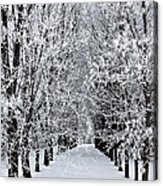 Icy Gateway Acrylic Print