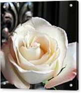 If Love Was A Rose Acrylic Print