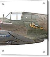 Illustration Of A Curtiss P40-c Warhawk Acrylic Print