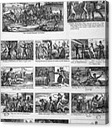 Illustrations Of The Antislavery Acrylic Print