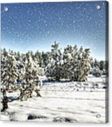 I'm Dreaming Of A White Christmas  Acrylic Print