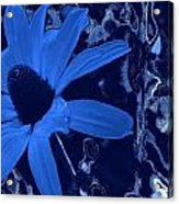 I'm So Blue Acrylic Print