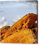 Imagination Runs Wild - Valley Of Fire Nevada Acrylic Print by Christine Till