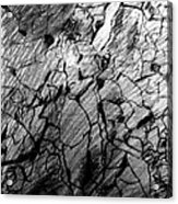 Immage In Stones Acrylic Print