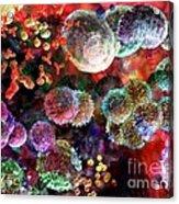 Immune Dreaming 2 Acrylic Print