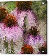 Impressionistic Cones Acrylic Print