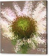 Impressionistic Echinacea Acrylic Print