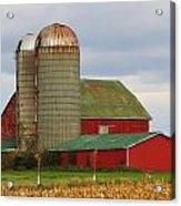 In Farmer's Field Acrylic Print