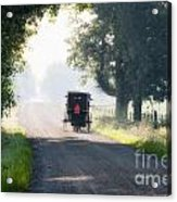 In The Heat Of The Day Acrylic Print