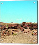 In The Petrified Forest In Arizona Acrylic Print