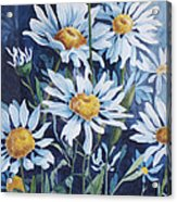 Indigo Daisies Acrylic Print by Yvonne Scott
