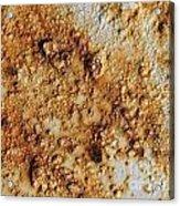 Industrial Corrosion Acrylic Print