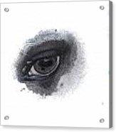 Indys Eye Acrylic Print